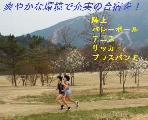 kurokan03neko-300x244